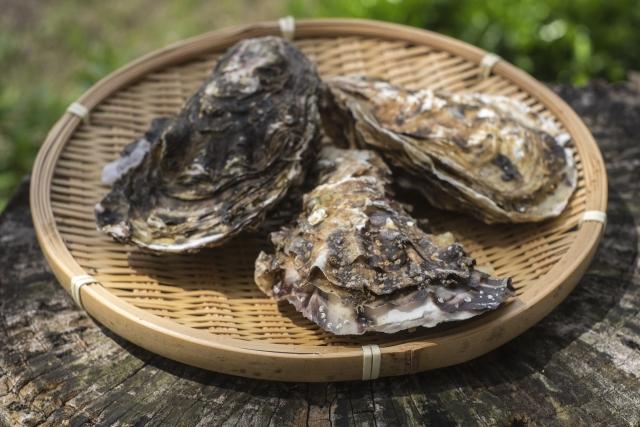 海鮮の定番『牡蠣』!海のミルクとも称される濃厚な味わいをBBQで!絶品レシピをご紹介♪