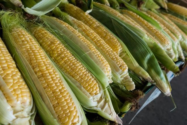 黄色い元気印の夏野菜!BBQで人気な『トウモロコシ』のレシピをご紹介♪